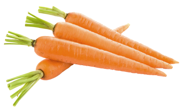 carrots-carotenoids-extends-life