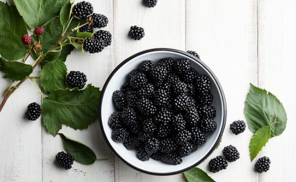 Berries for healthy eyes